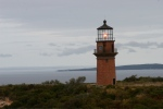 vpxiGayHead Light