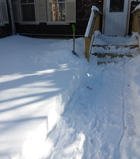 path to front deck january snowstorm 2019